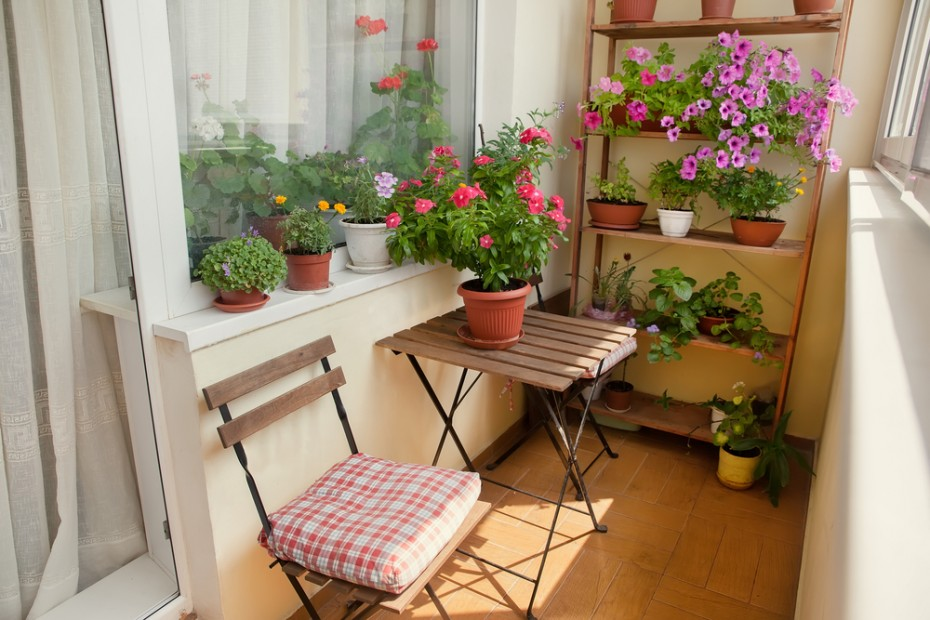 9 Tips for a Beautiful Balcony Garden Housing News