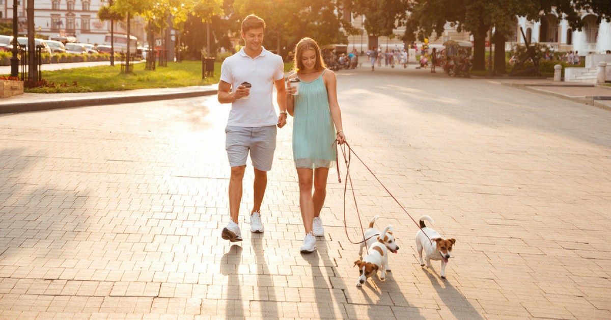 Home Improvement Loans >> Dos and don'ts for housing societies for pets and stray ...