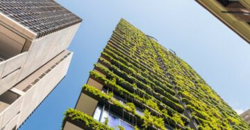 Delhi environment minister moots development of vertical gardens to tackle pollution